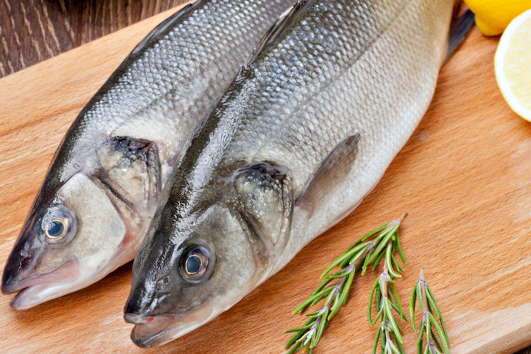 Diferencias entre pescado azul y pescado blanco