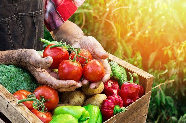 El calabacín es la verdura favorita para muchas personas y es sin duda, la más deliciosa de las verduras para asar en primavera