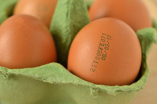 Es muy difícil distinguir un huevo sano de uno que este infectado