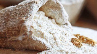 Cuáles son las diferencias entre la harina de fuerza y la harina normal