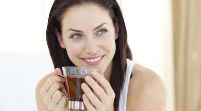 Cuáles son las diferencias entre el té y las infusiones