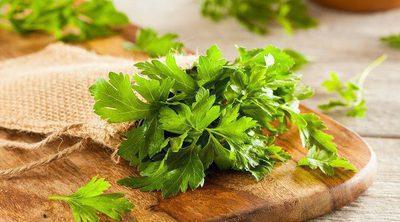 7 alimentos que te aportan vitamina E