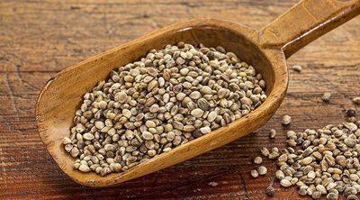Increíbles beneficios de las semillas de cáñamo