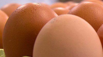 Huevos camperos: el placer de comer un alimento delicioso y saludable