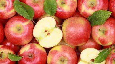 Manzana: tipos, beneficios y usos